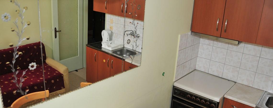 Family Apartment 102